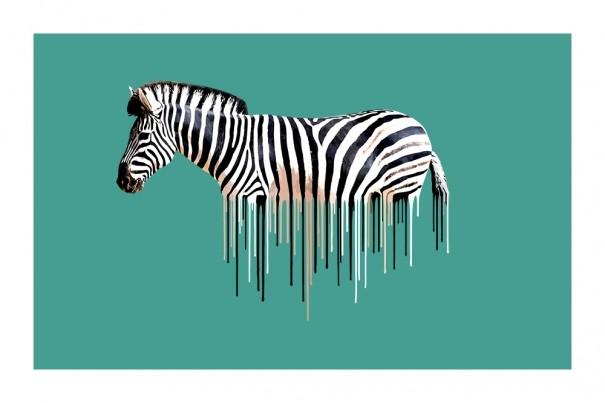 Carl Moore - Zebra