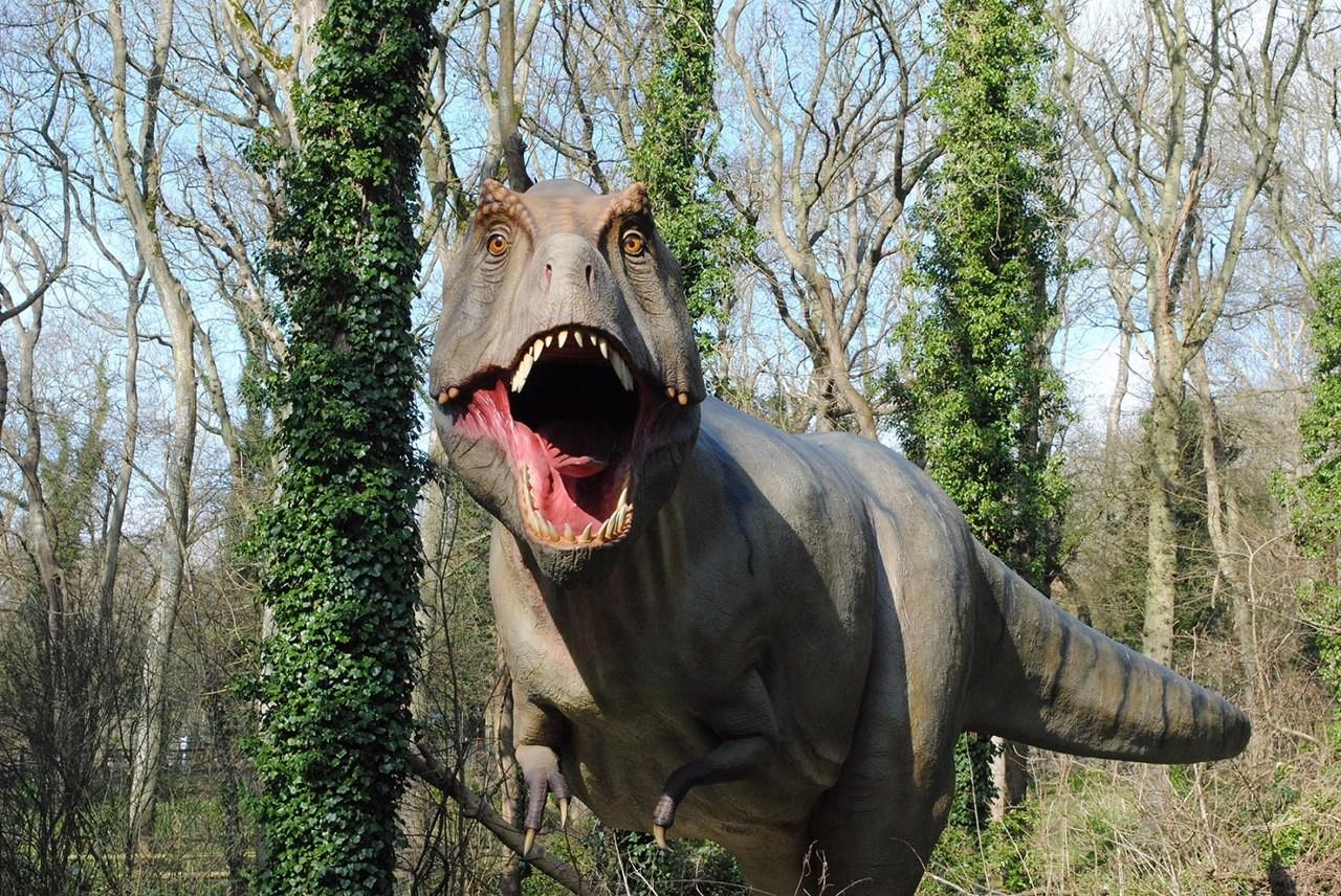 port lympne safari park dinosaur forest the london mummy. Black Bedroom Furniture Sets. Home Design Ideas