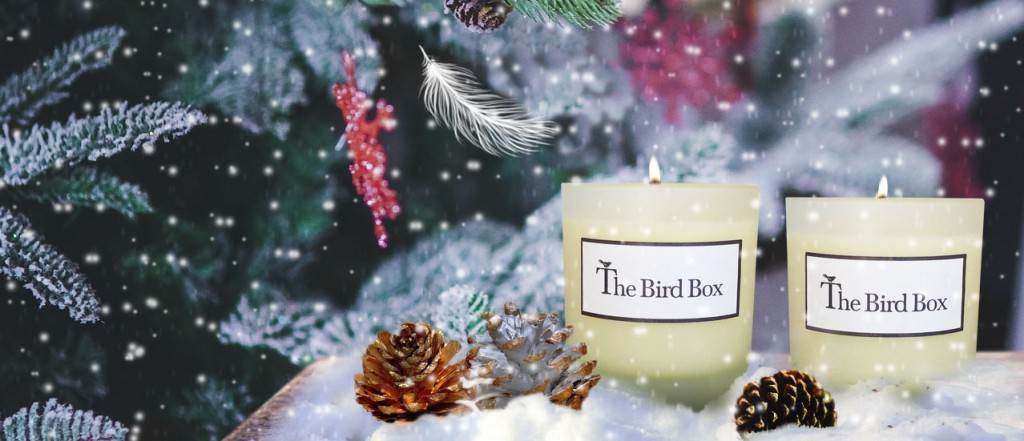 Christmas Bird Box Photo