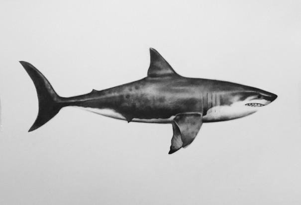 Antonia Barclay - Jaws 2
