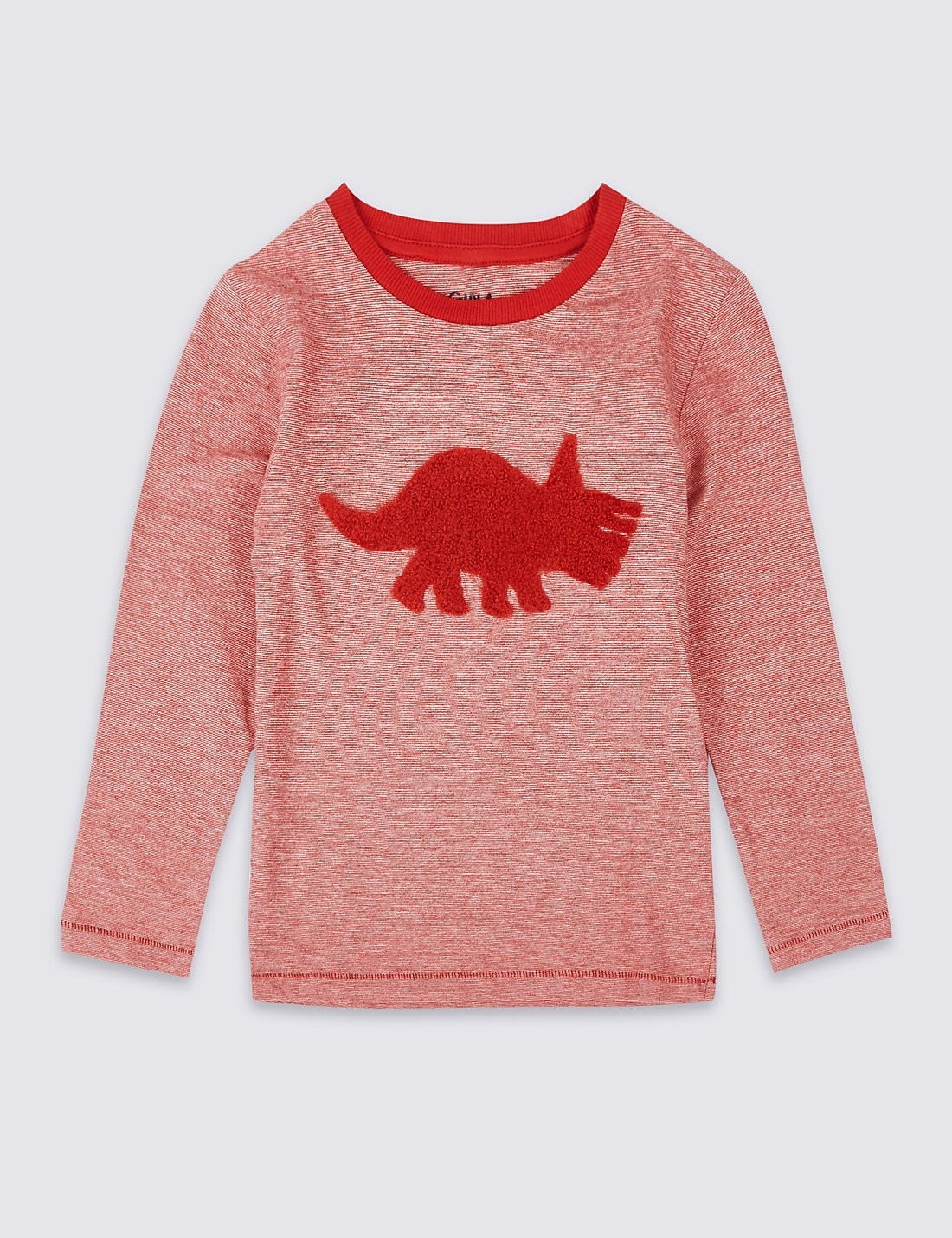 Young Boys Dino Long Sleeve T Shirt