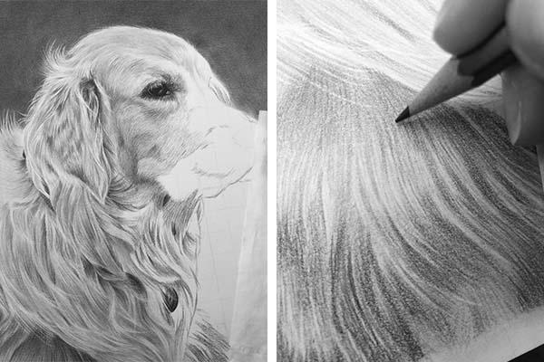 Pet portrait Jess Ridley